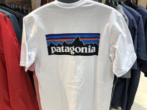 パタゴニアTシャツ!入荷!大人気♪