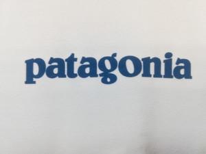 夏の人気アイテム!パタゴニア 「キャプリーン クール」
